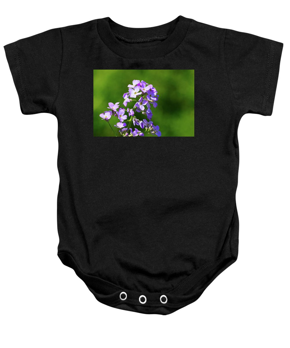 Nature Baby Onesie featuring the photograph Mauve Flowers by Lyle Crump