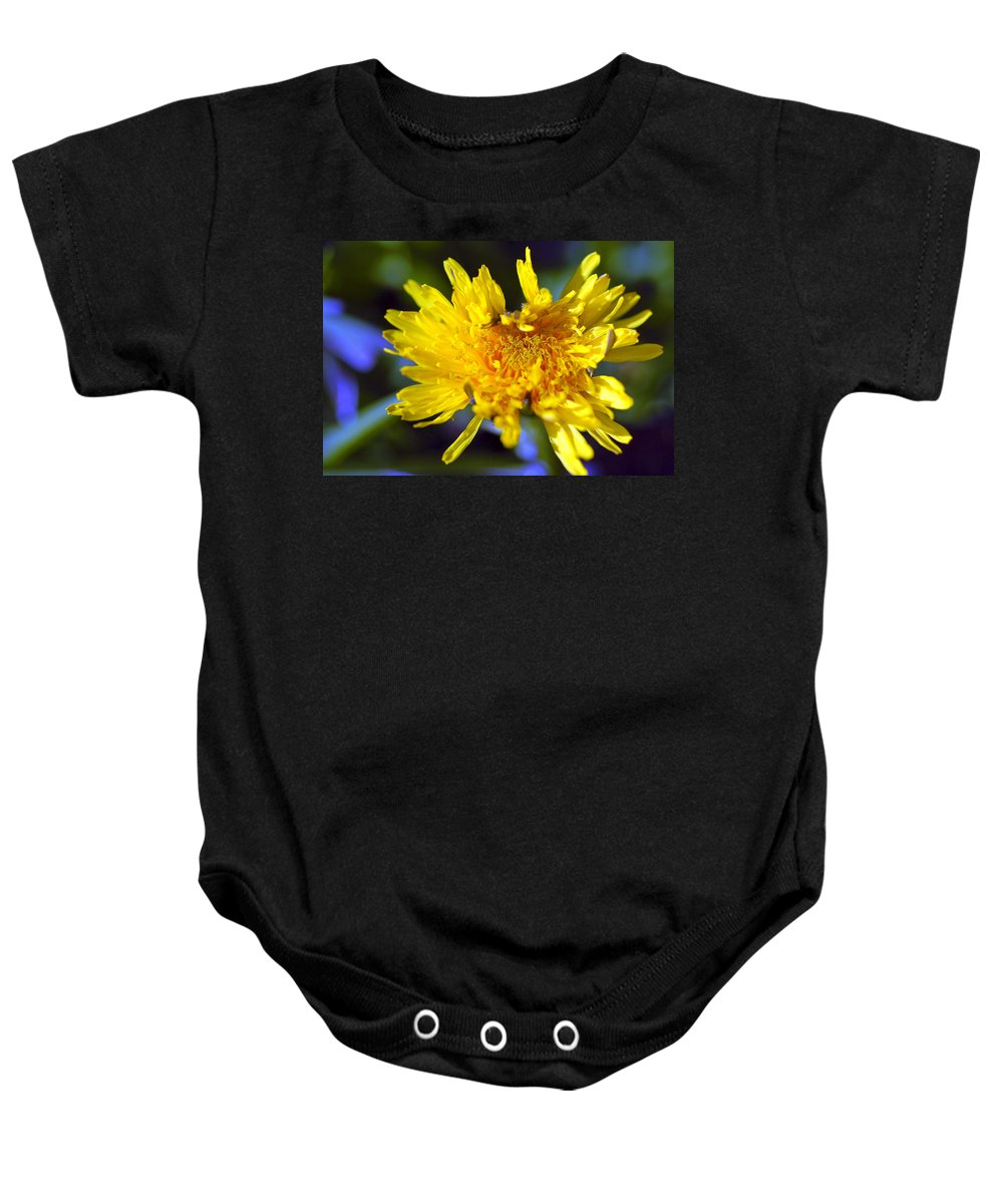 Flower Baby Onesie featuring the photograph Mello Yello by Stephen Anderson