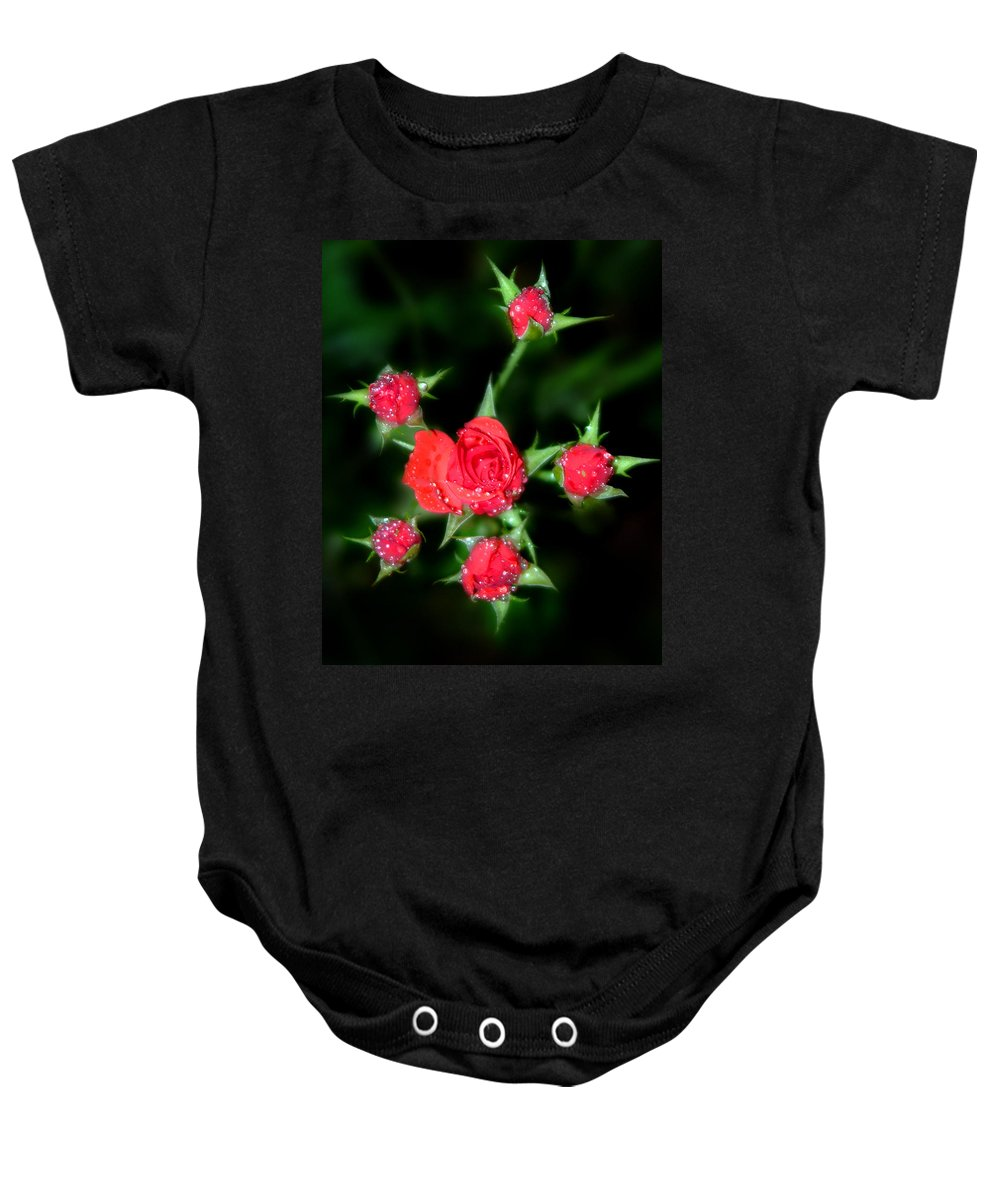 Roses Baby Onesie featuring the photograph Mini Roses by Anthony Jones