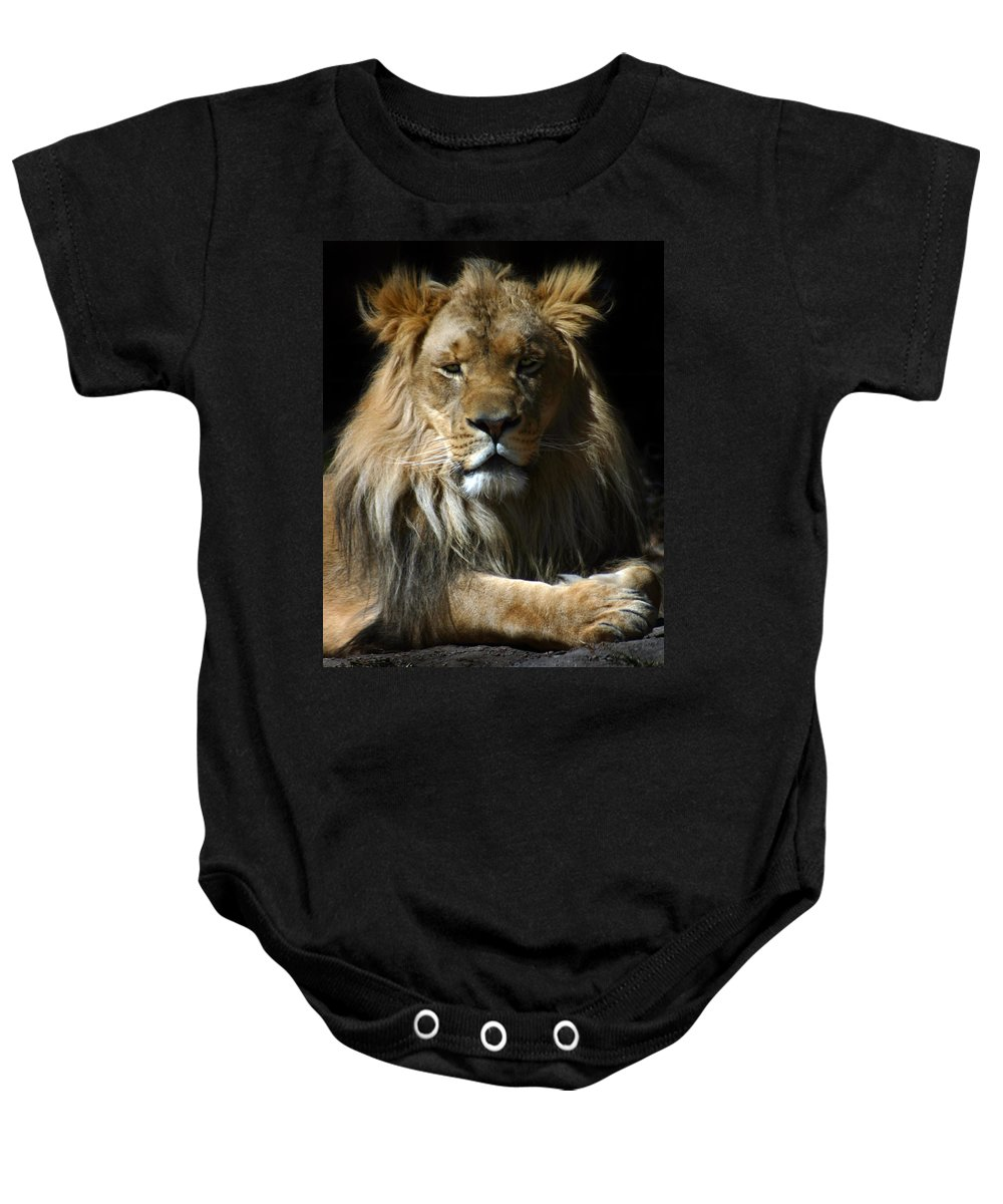 Lion Baby Onesie featuring the photograph Mohawk by Anthony Jones
