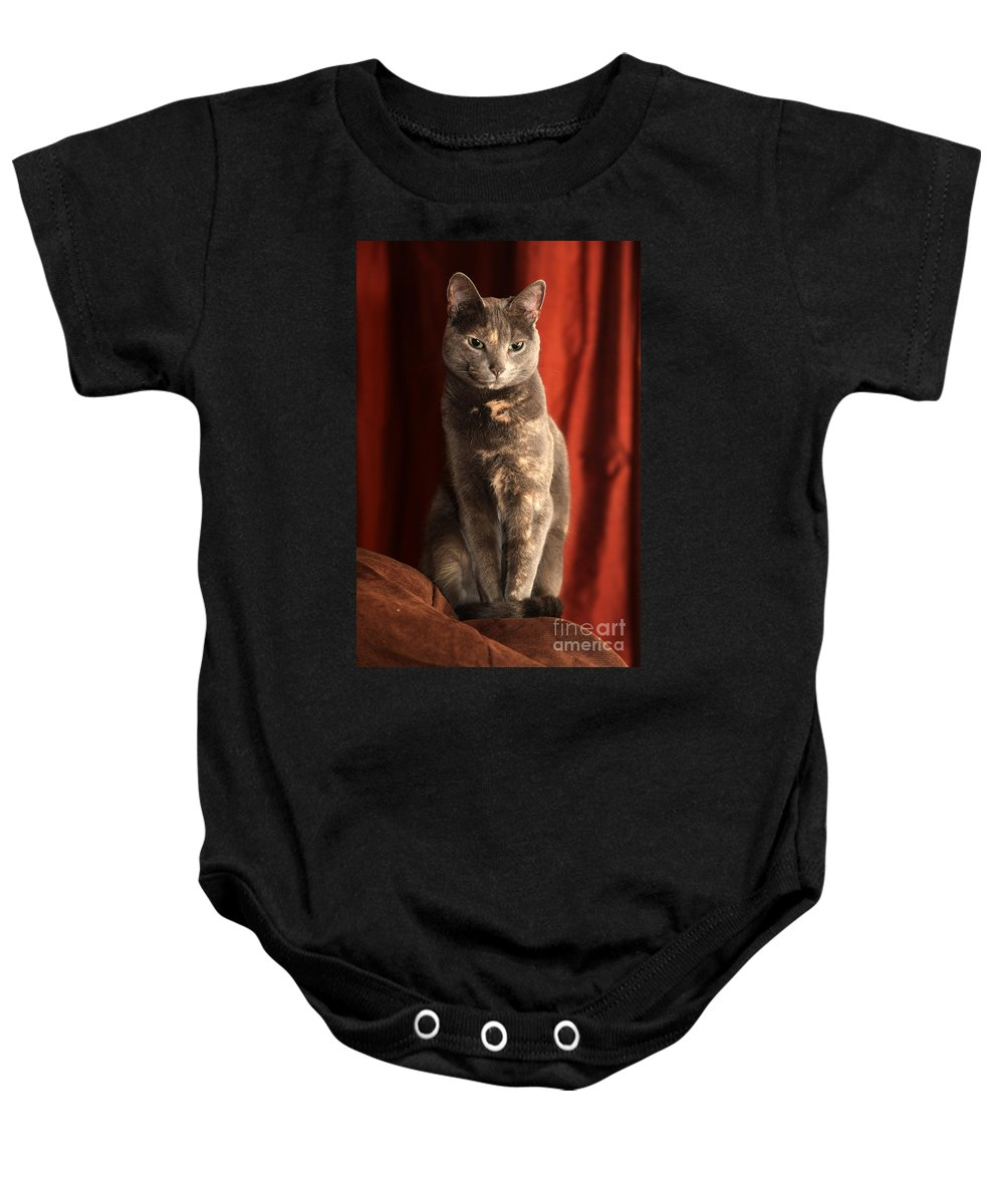 Cat Baby Onesie featuring the photograph Mollie by Amanda Barcon