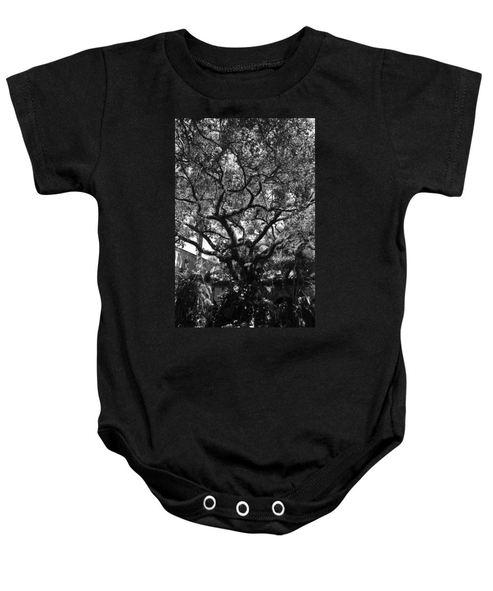 Black And White Baby Onesie featuring the photograph Monastery Tree by Rob Hans