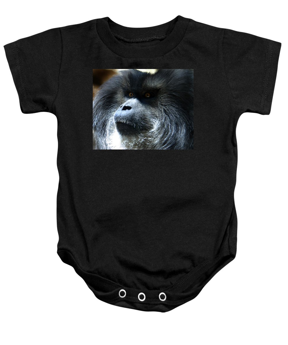 Monkey Baby Onesie featuring the photograph Monkey Stare by Anthony Jones