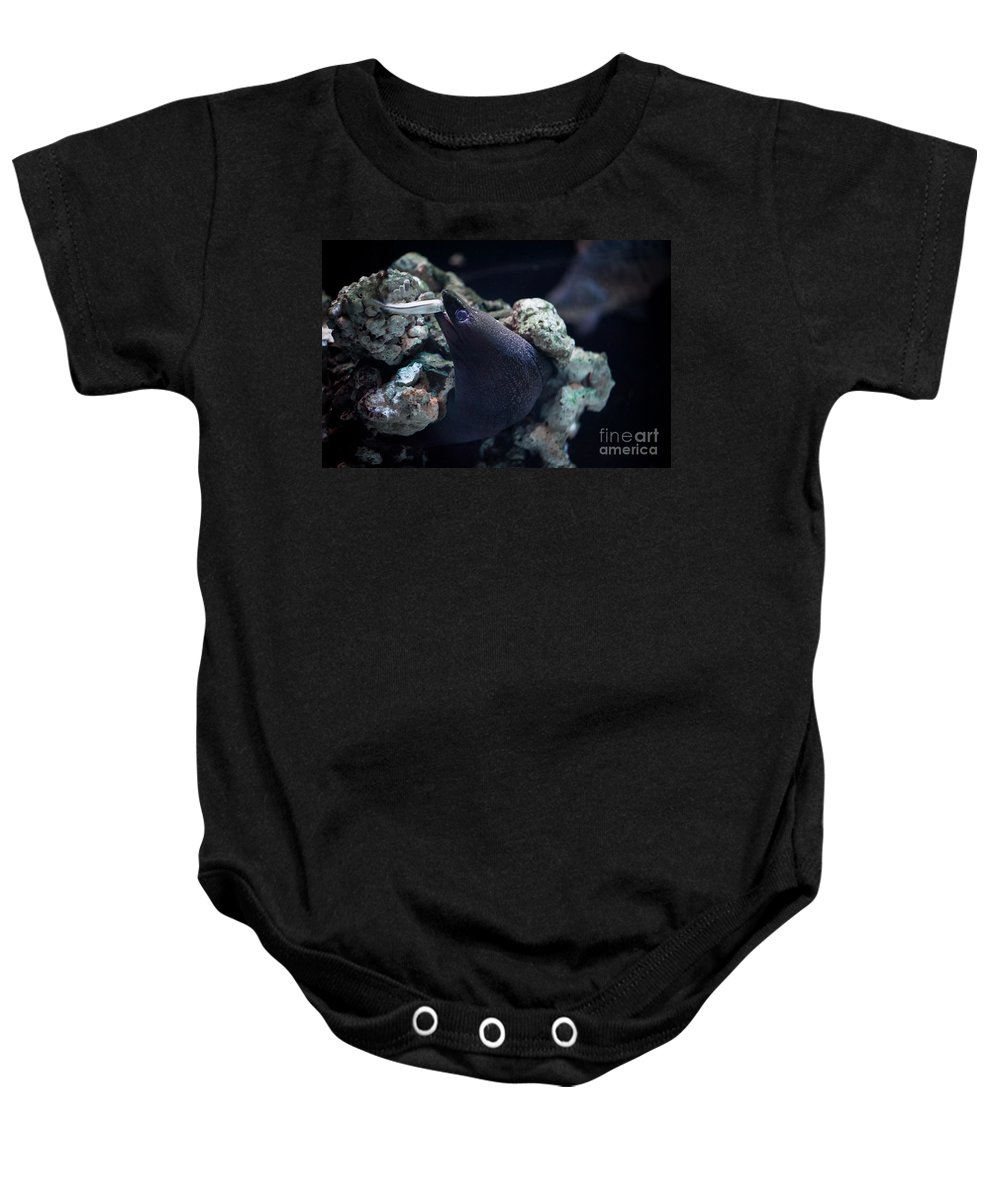 Moray Eel Baby Onesie featuring the photograph Moray Eel Eating Little Fish by Arletta Cwalina
