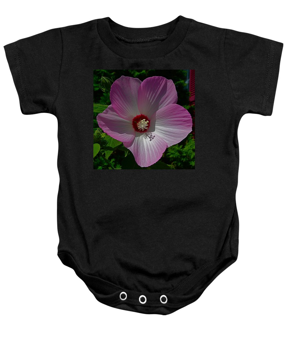 Flower Big Baby Onesie featuring the photograph Mr. Big by Robert Pearson