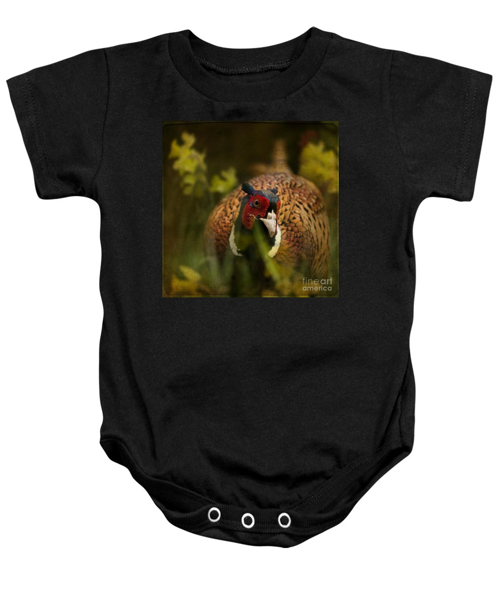 Pheasant Baby Onesie featuring the photograph Mr Spring by Angel Ciesniarska