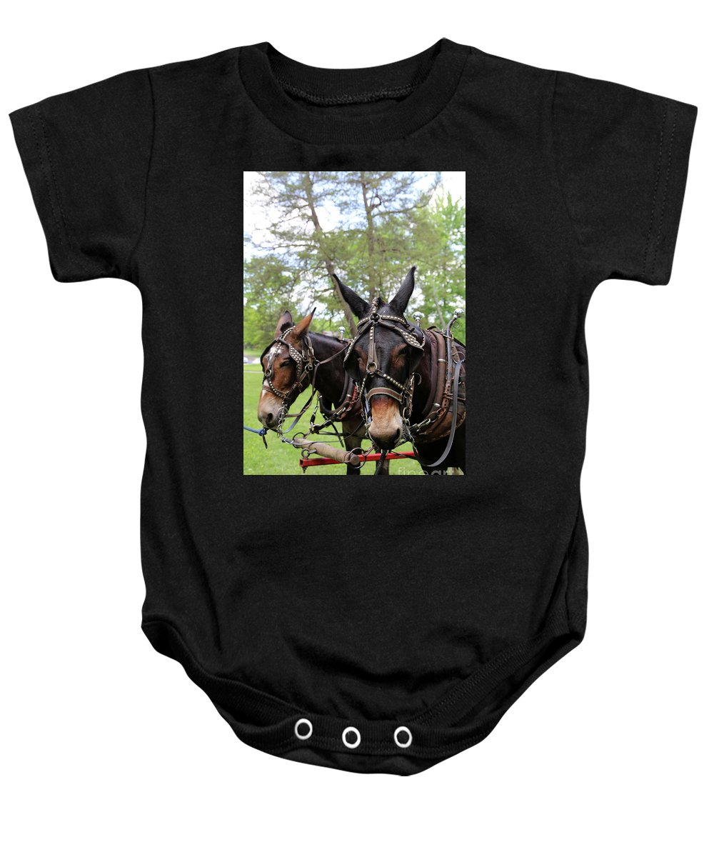Mule Baby Onesie featuring the photograph Mule Days 2 by Dwight Cook