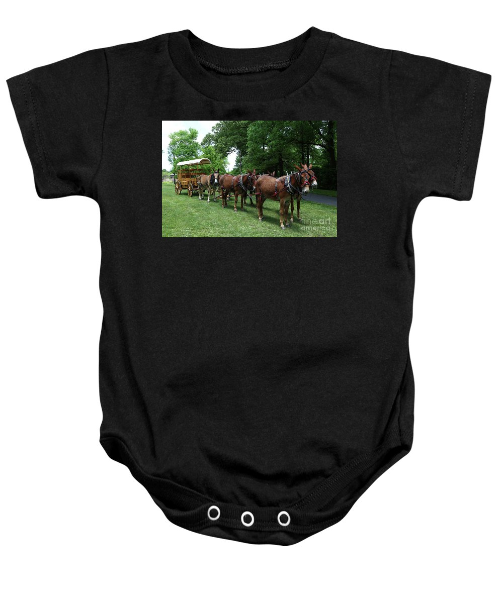 Mule Baby Onesie featuring the photograph Mule Team by Dwight Cook