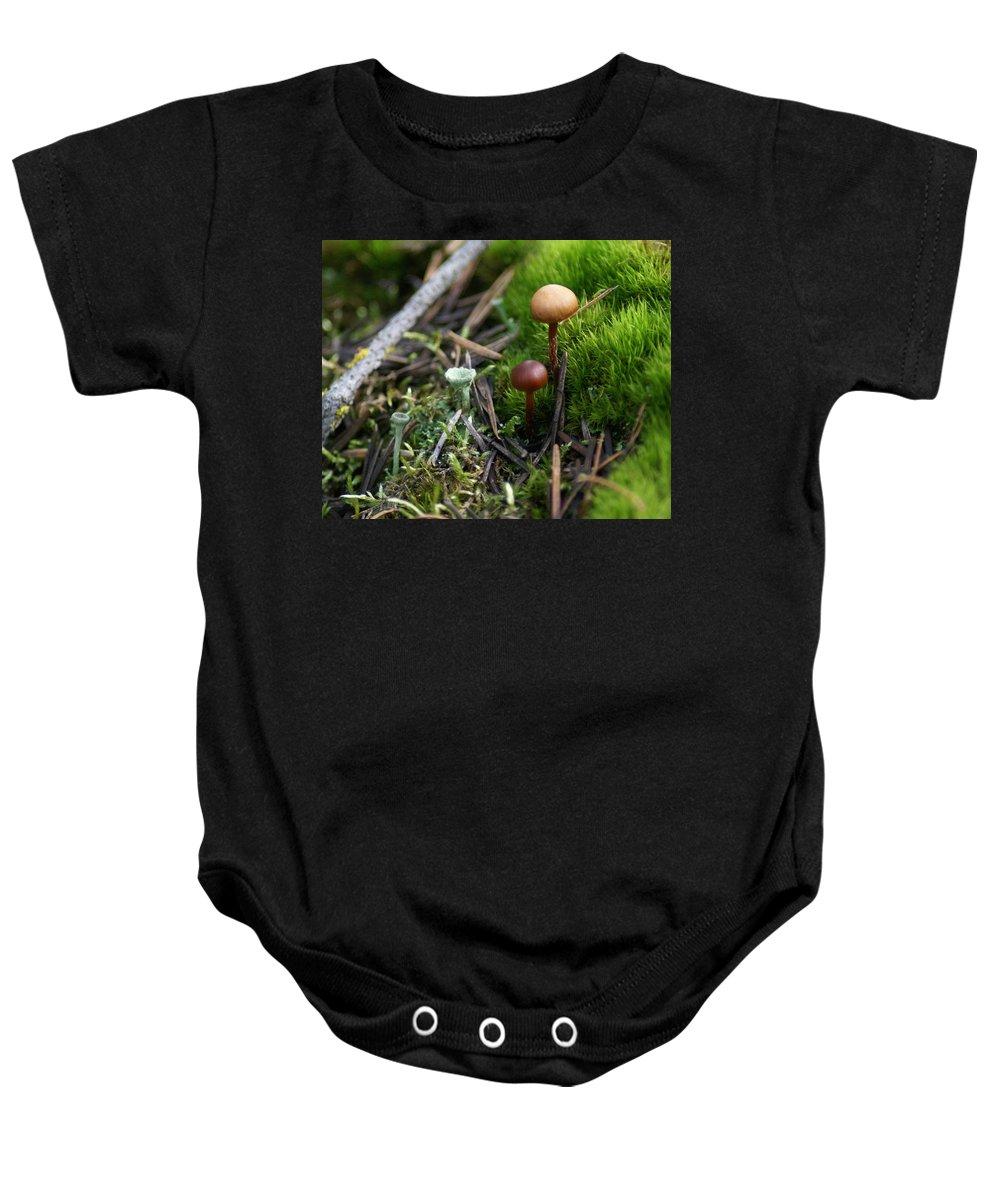 Nature Baby Onesie featuring the photograph Mushroom Tundra by Ben Upham III