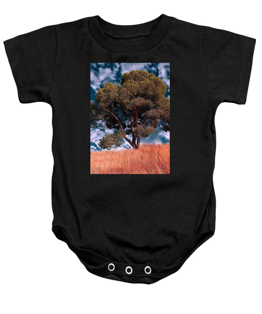 Photograph Baby Onesie featuring the photograph Nature - Green Tree by Munir Alawi