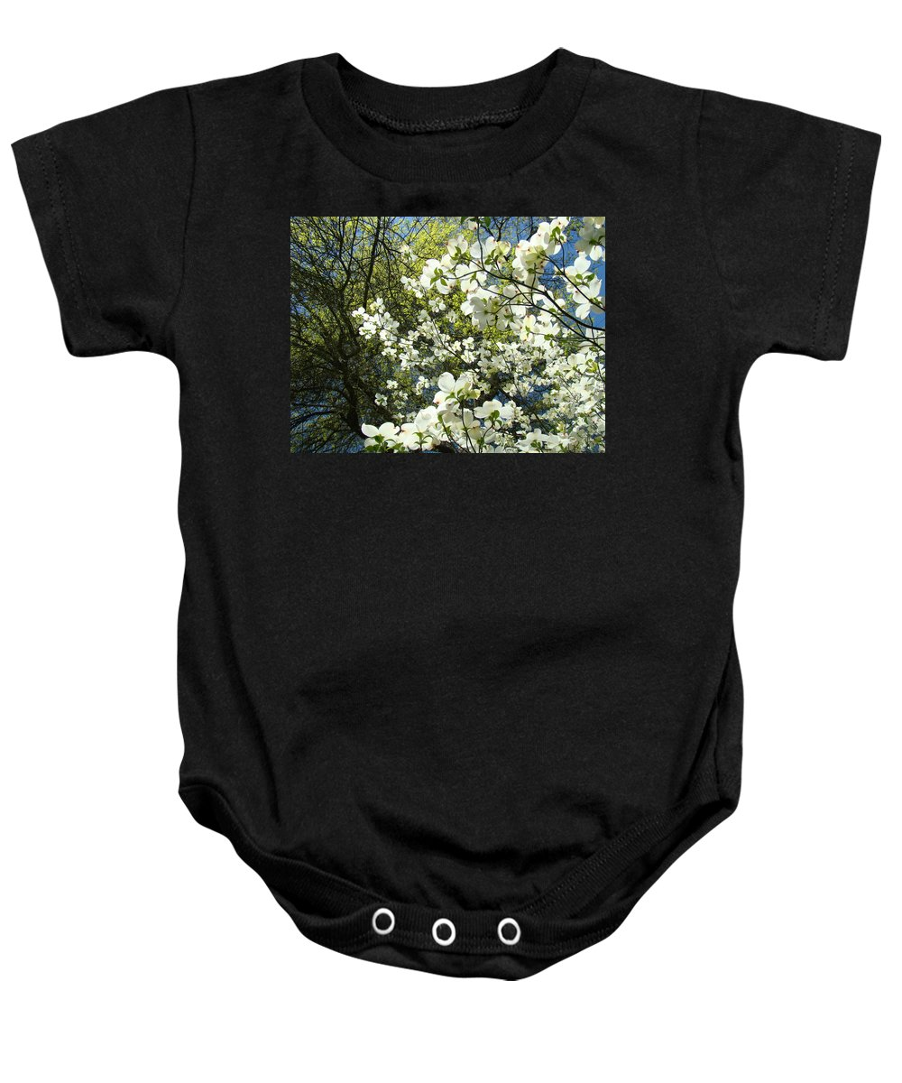 Dogwood Baby Onesie featuring the photograph Nature Tree Landscape Art Prints White Dogwood Flowers by Baslee Troutman
