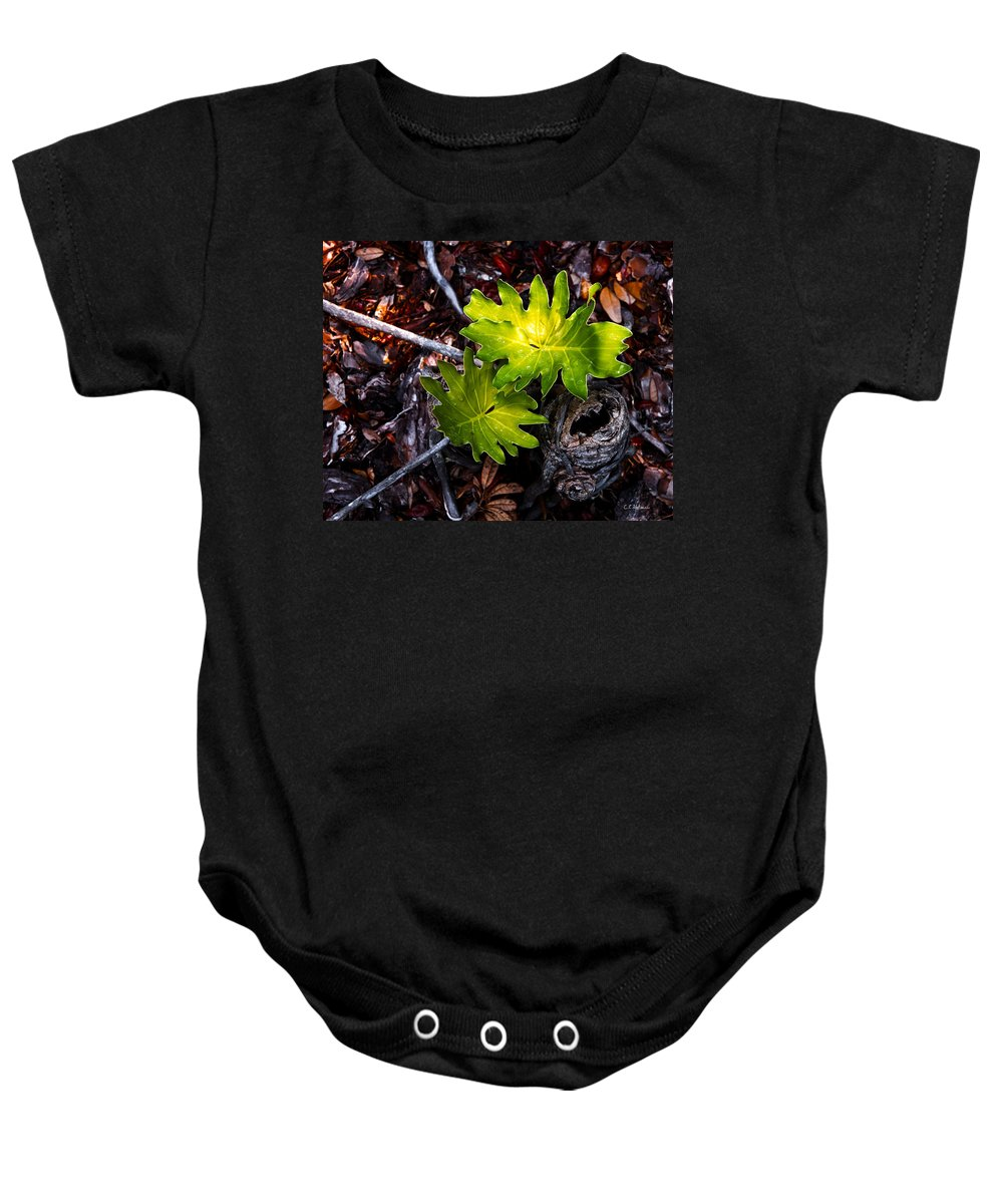 Plant Baby Onesie featuring the photograph New Growth by Christopher Holmes