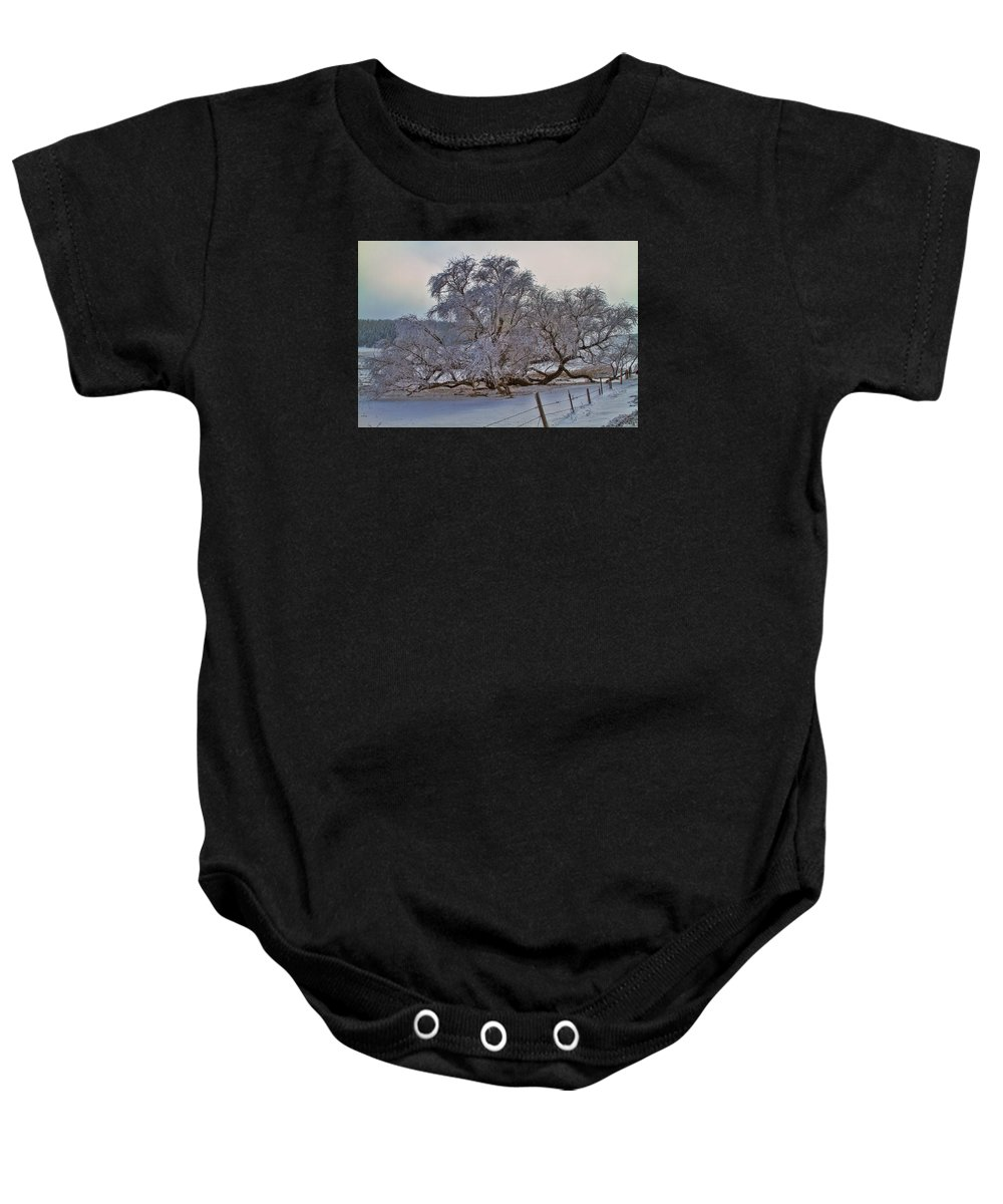 Tree Baby Onesie featuring the photograph North Side by Alana Thrower