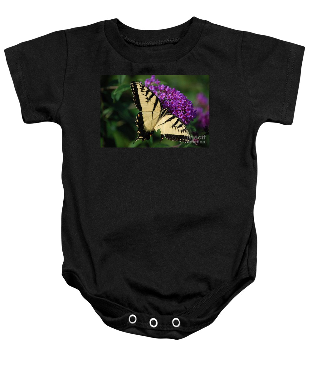 Butterfly Baby Onesie featuring the photograph Nothing Is Perfect by Debbi Granruth