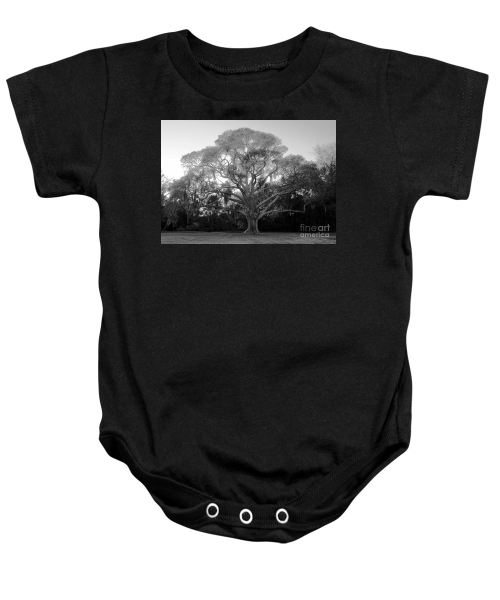 Oak Tree Baby Onesie featuring the photograph Oak Tree by David Lee Thompson