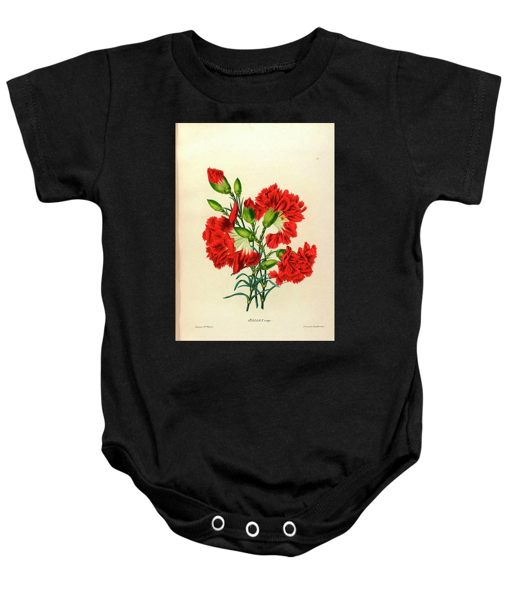 1786-1830 Baby Onesie featuring the painting Oeillet Rouge by Unknown