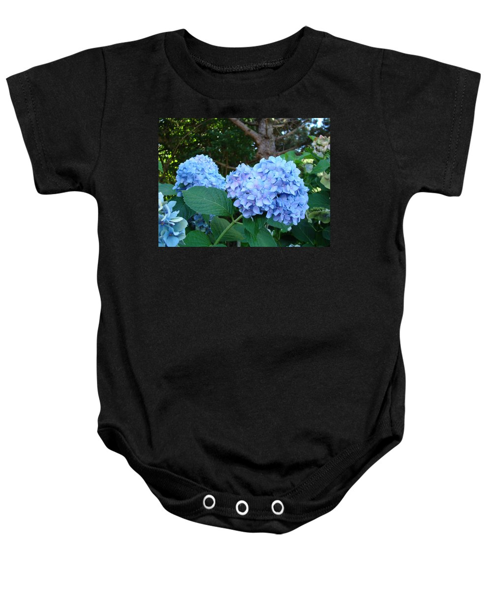 Hydrangea Baby Onesie featuring the photograph Office Art Hydrangea Flowers Blue Giclee Prints Floral Baslee Troutman by Baslee Troutman