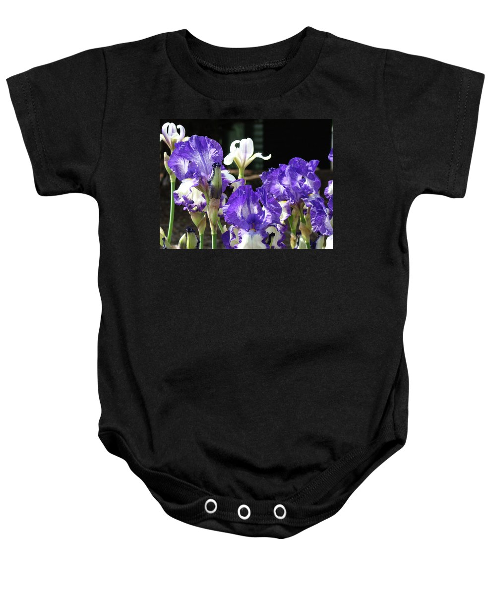Iris Baby Onesie featuring the photograph Office Art Prints Iris Flower Botanical Landscape 30 Giclee Prints Baslee Troutman by Baslee Troutman