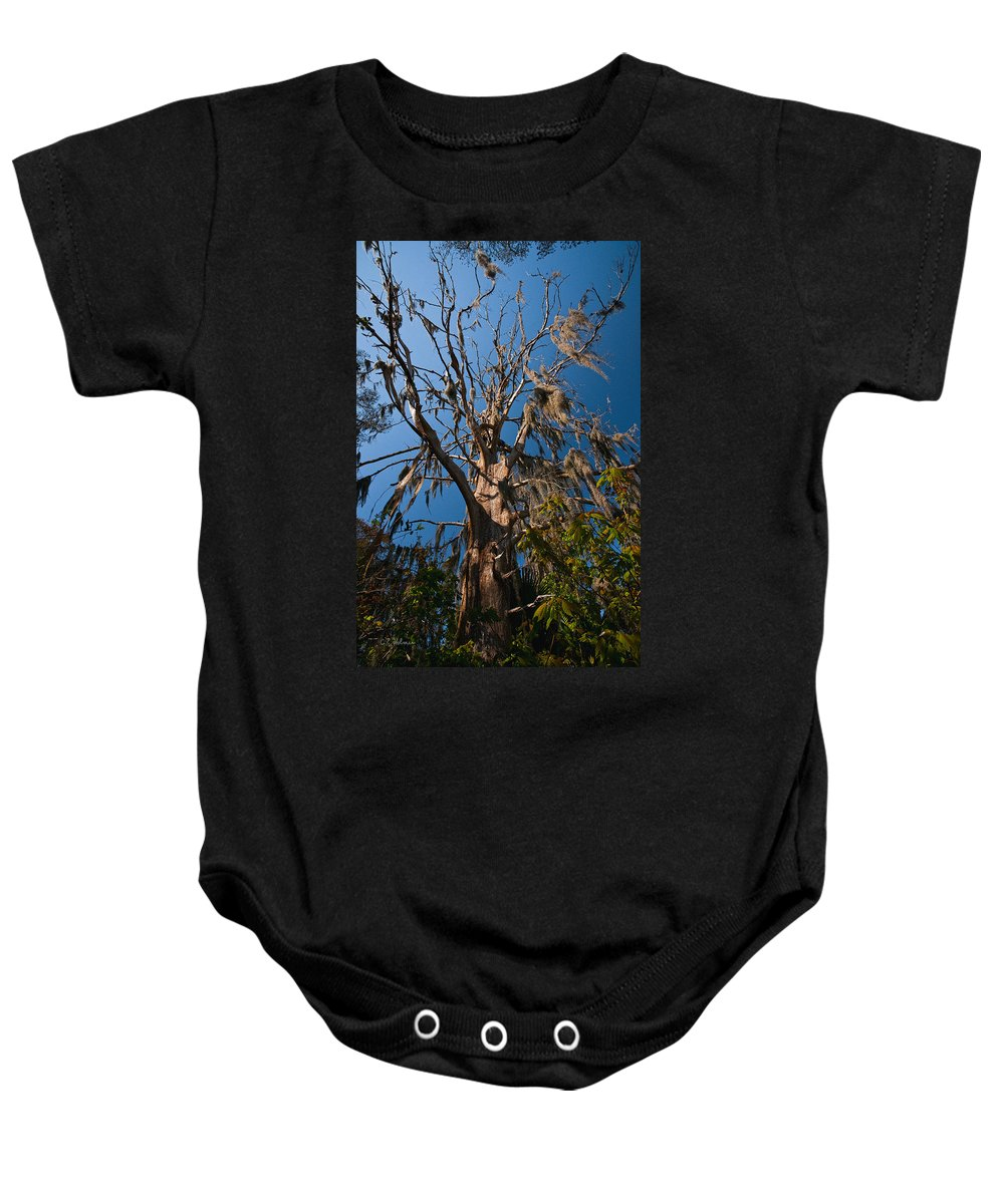 Marsh Baby Onesie featuring the photograph Old Cypress by Christopher Holmes