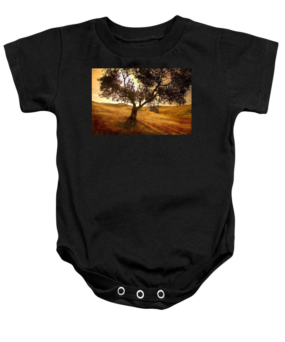 Landscape Baby Onesie featuring the photograph Olive Tree Dawn by Mal Bray