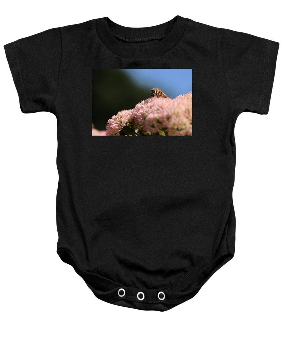 Bee Baby Onesie featuring the photograph On Flower Mountain by Angela Rath