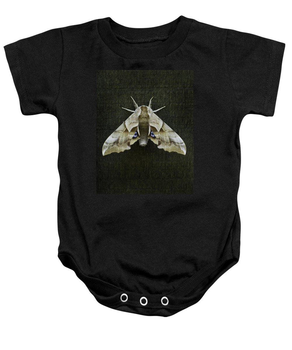 Moth Baby Onesie featuring the photograph One Eyed Sphinx Moth by Herman Robert