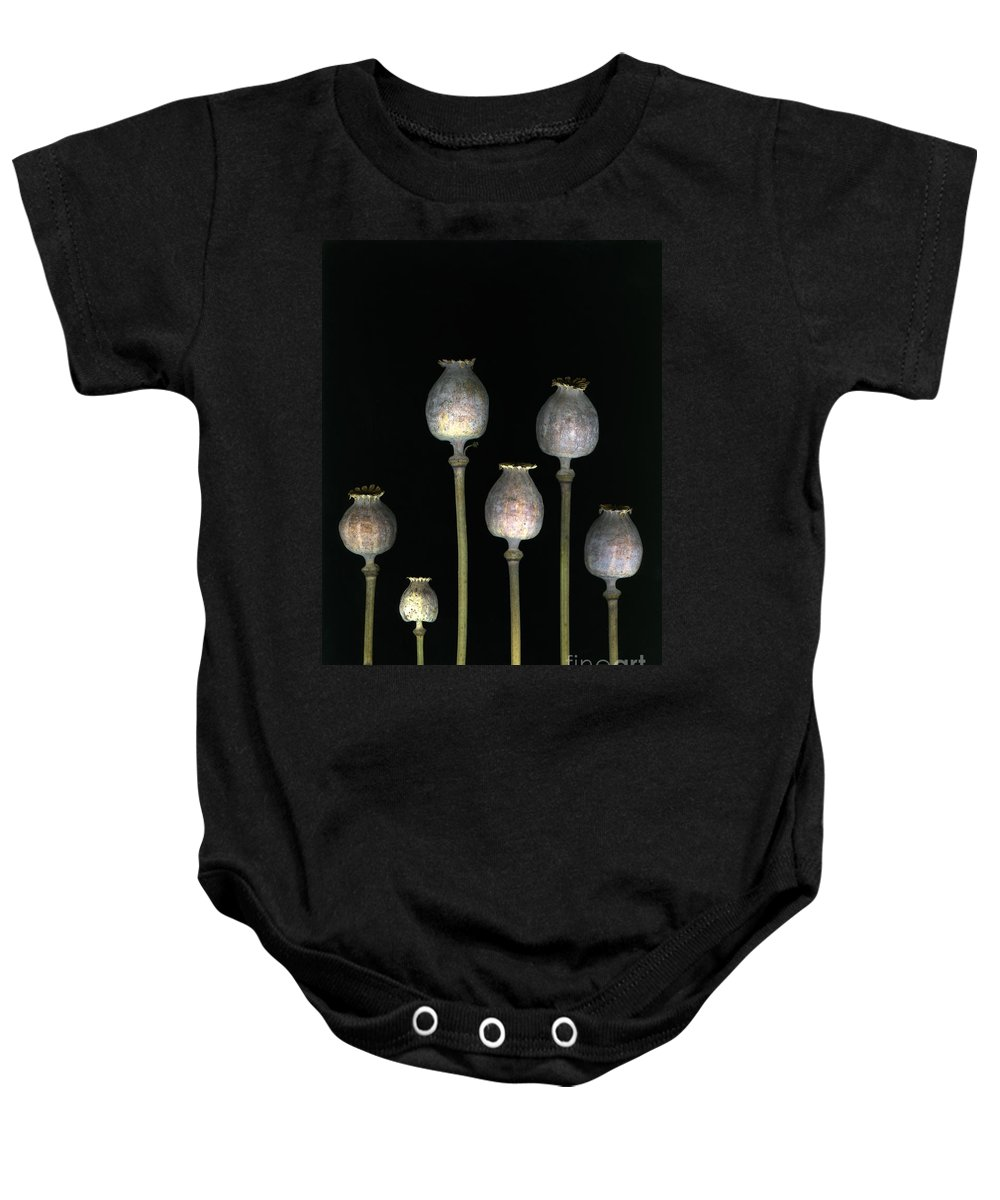 Scanography Baby Onesie featuring the photograph Opiates by Christian Slanec
