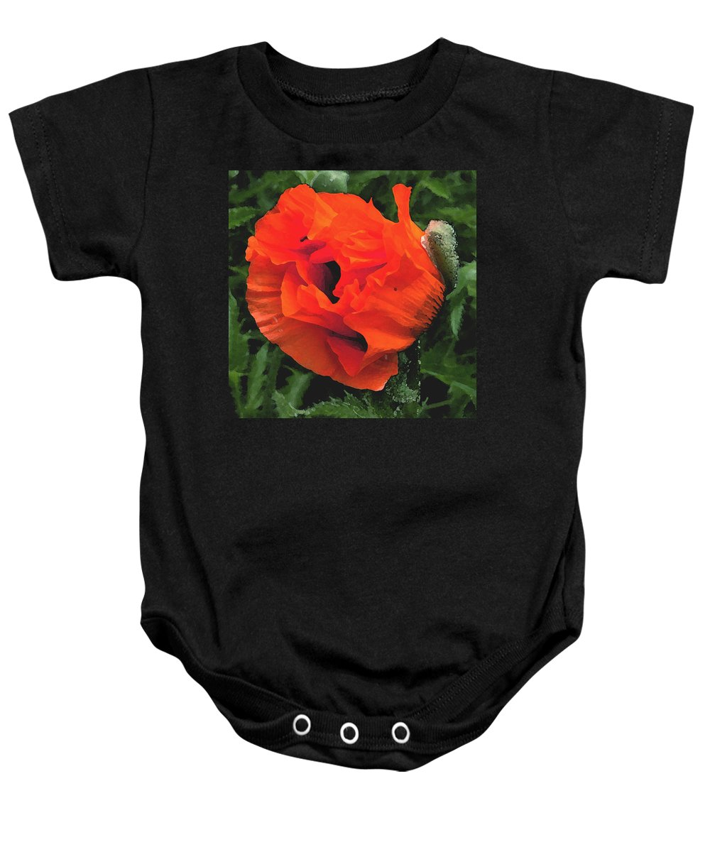 Opium Poppy Baby Onesie featuring the photograph Opium by Heather Lennox