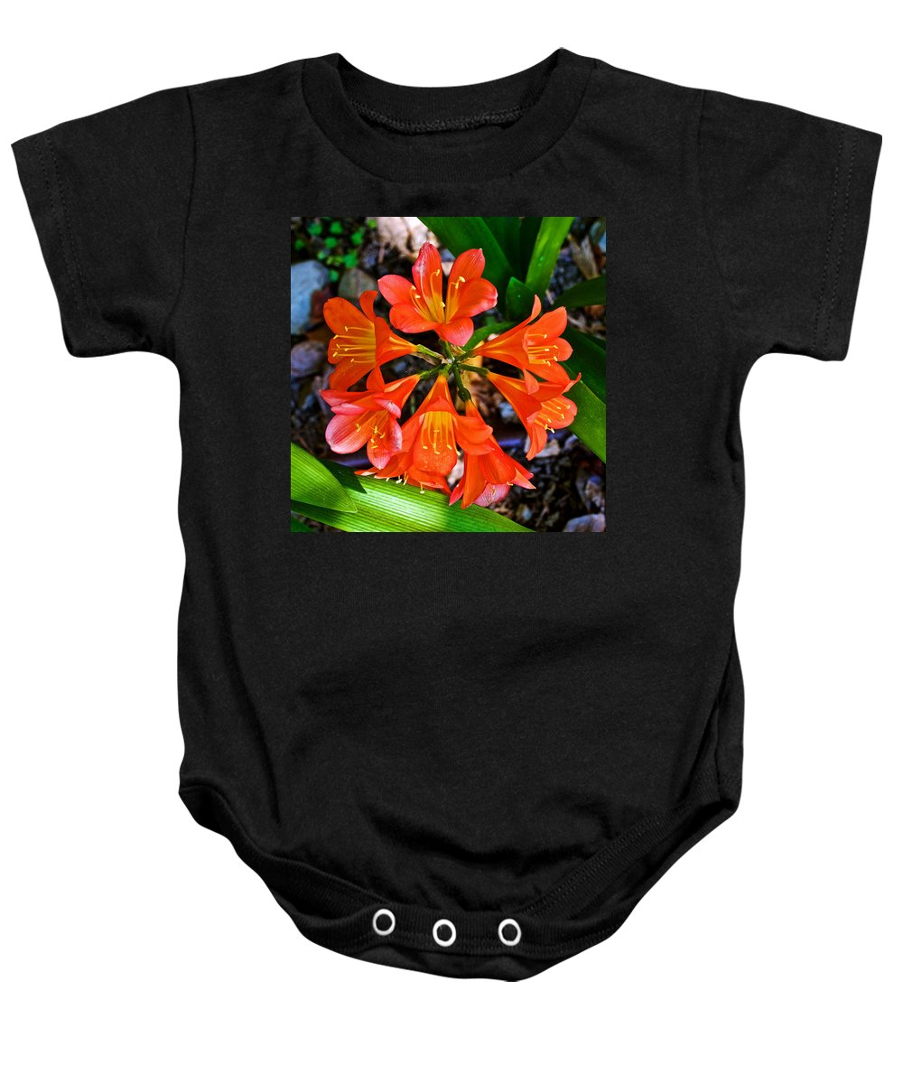 Orange Trumpet Flowers At Pilgrim Place In Claremont Baby Onesie featuring the photograph Orange Trumpet Flowers At Pilgrim Place In Claremont-california by Ruth Hager