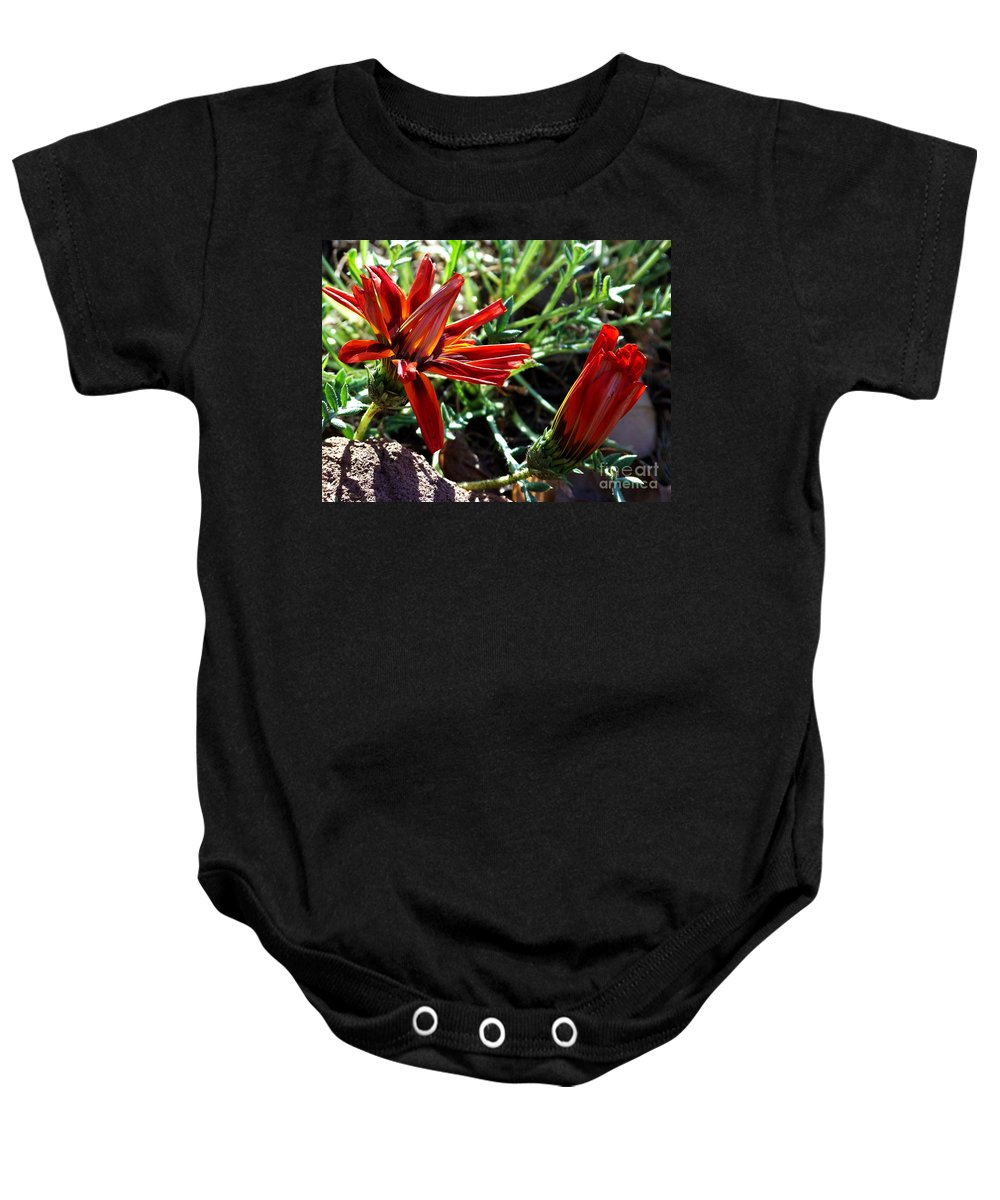 Gazania Baby Onesie featuring the photograph Orange Power by Kathy McClure
