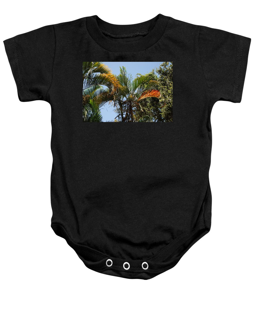 Palms Baby Onesie featuring the photograph Orange Trees by Rob Hans
