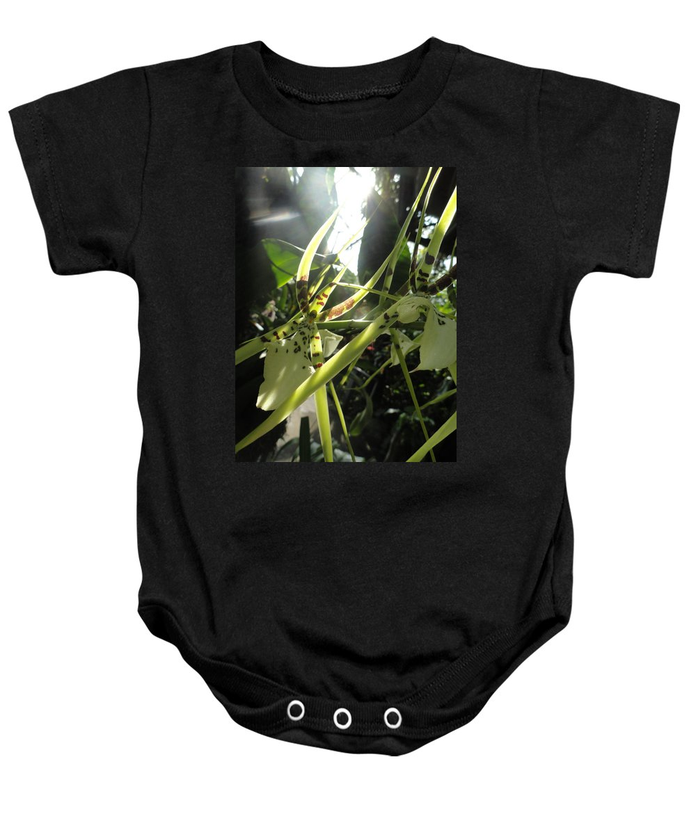Orchid Baby Onesie featuring the photograph Orchid Light by Trish Hale
