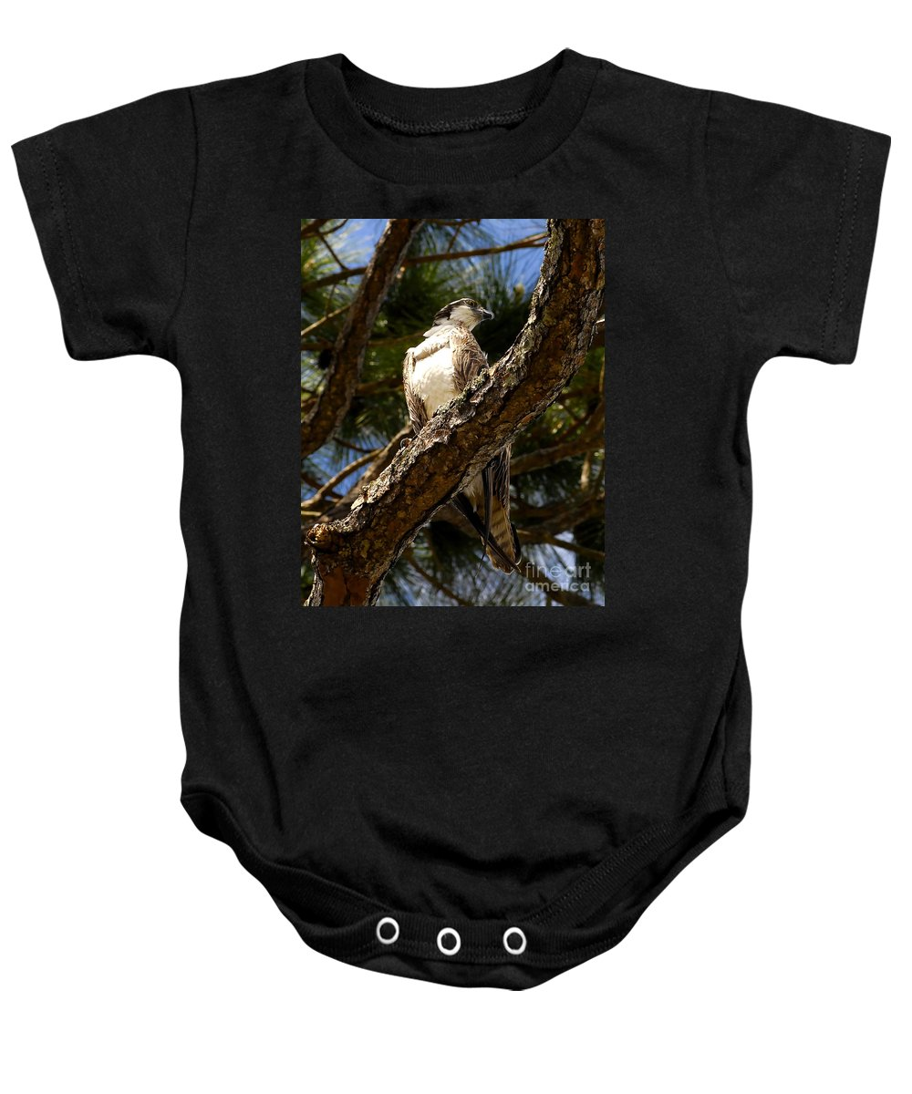Osprey Baby Onesie featuring the photograph Osprey Hunting by David Lee Thompson