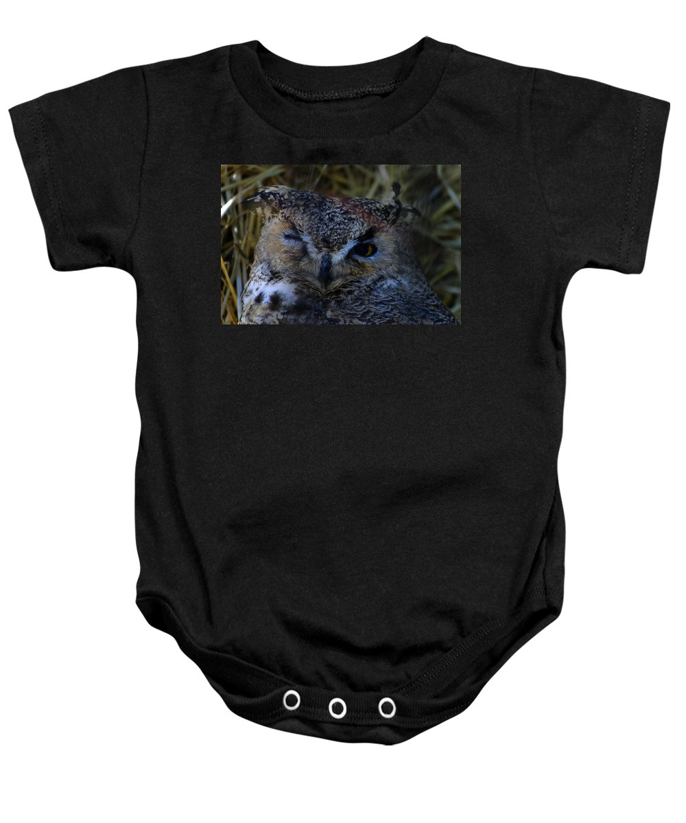 Owl Baby Onesie featuring the photograph Owl by Anthony Jones