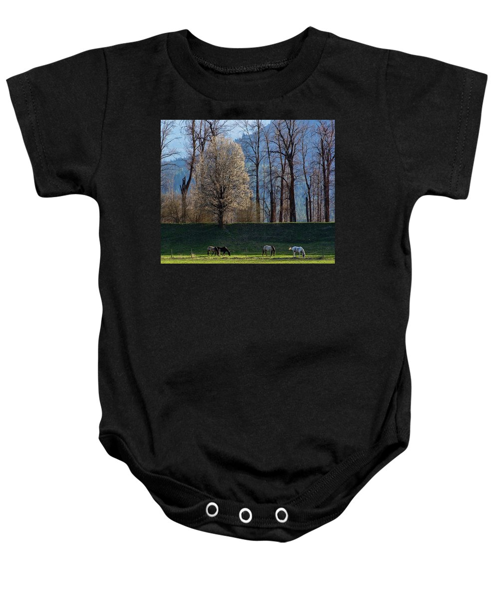 Horse Baby Onesie featuring the photograph Peace by Monte Arnold