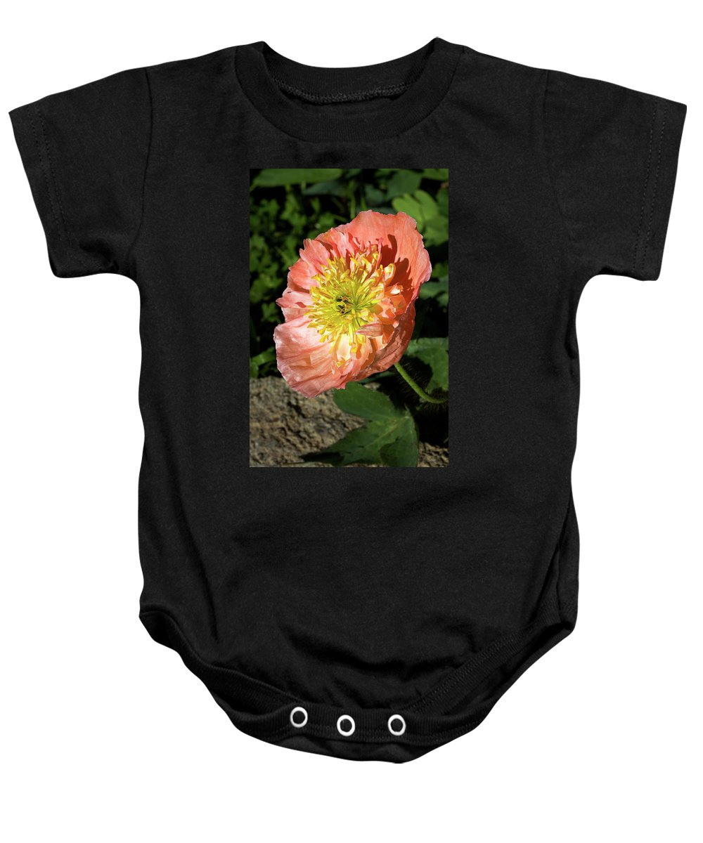 Poppy Baby Onesie featuring the photograph Peach Colored Poppy by Phyllis Denton