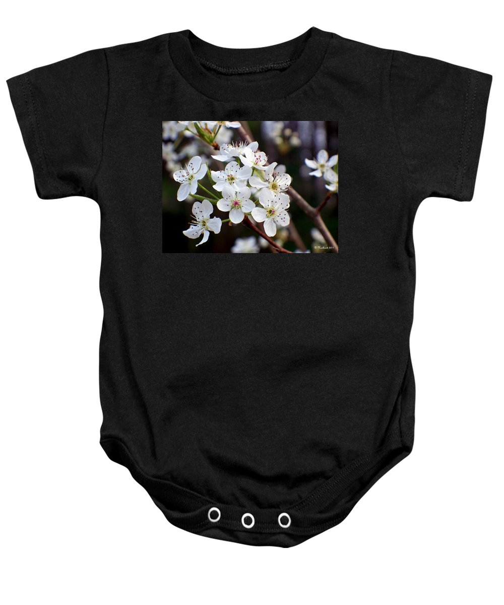 Pear Baby Onesie featuring the photograph Pear Tree Blossoms II by Betty Northcutt