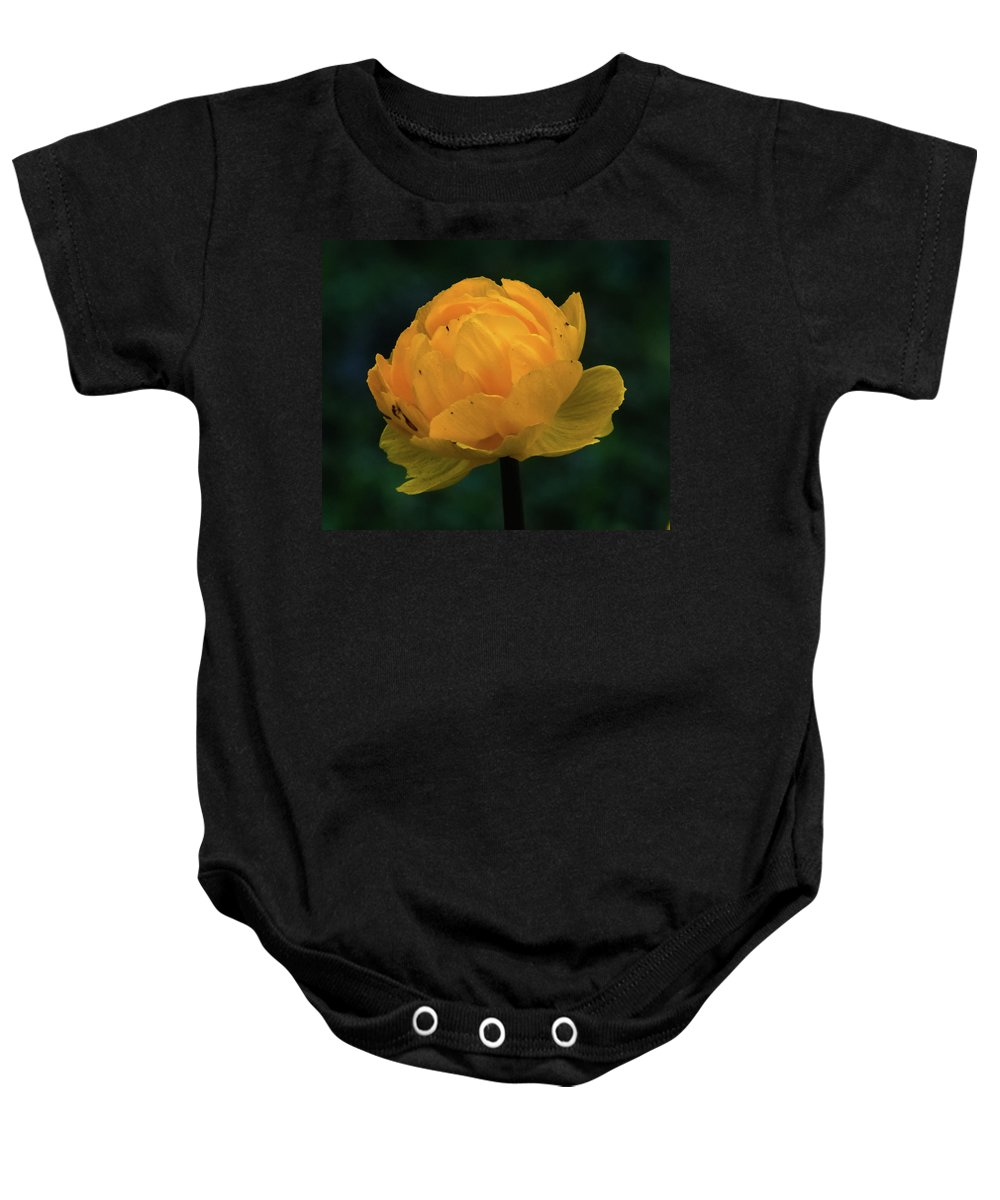 Flower Baby Onesie featuring the photograph Peone by Libby Lord