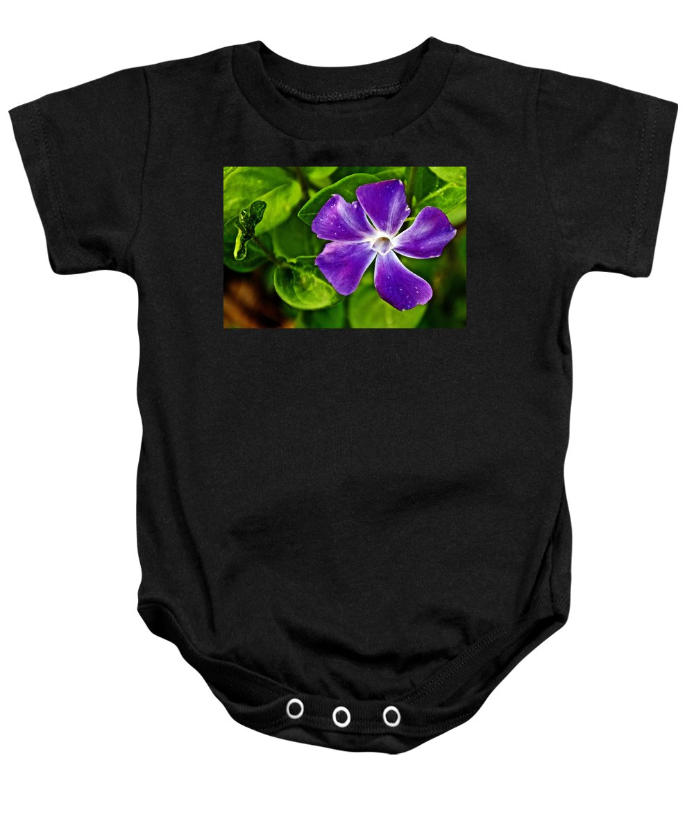 Periwinkle At Pilgrim Place In Claremont Baby Onesie featuring the photograph Periwinkle At Pilgrim Place In Claremont-california by Ruth Hager