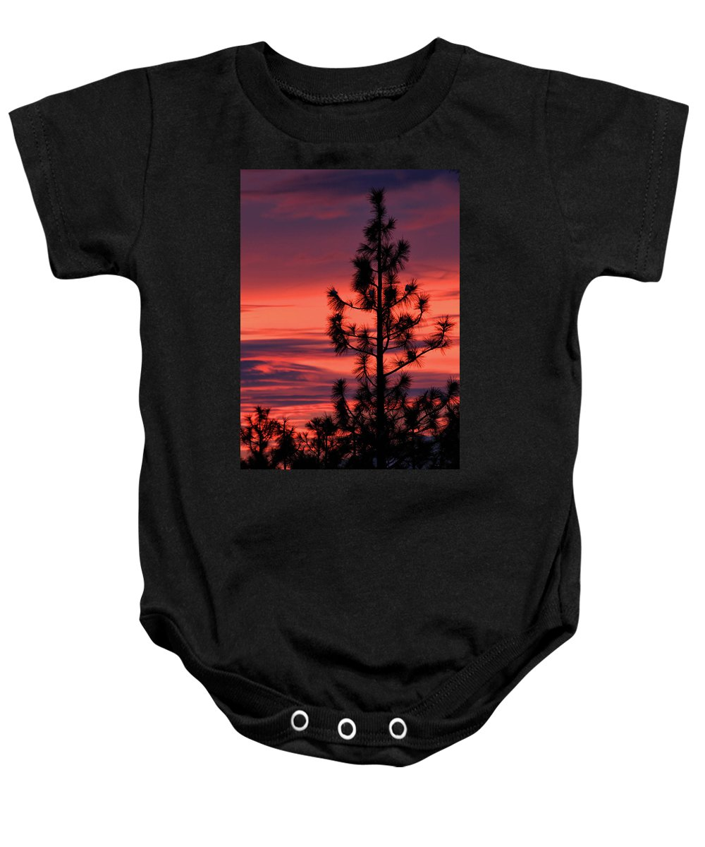 Branches Baby Onesie featuring the photograph Pine Tree Sunrise by James Eddy