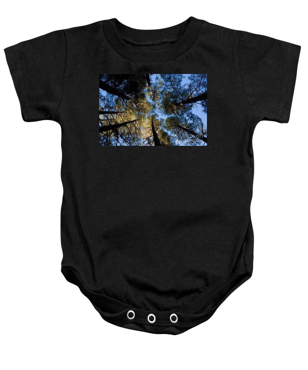 Pine Trees Baby Onesie featuring the photograph Pine Trees Near Ruidoso Nm by Matt Suess