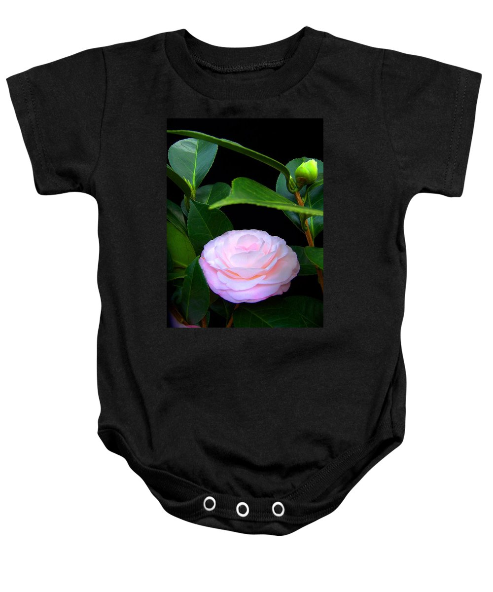 Camelia Baby Onesie featuring the photograph Pink Camelia by Laurie Paci