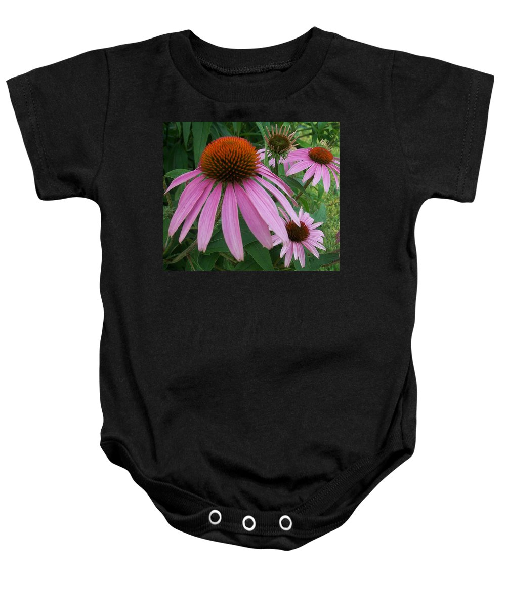 Flowers Baby Onesie featuring the photograph Pink In The Garden by Anita Burgermeister