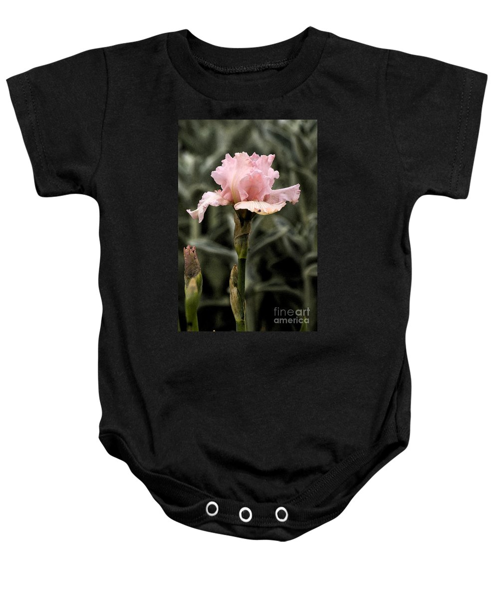 Pink Baby Onesie featuring the photograph Pink Iris by Jim And Emily Bush