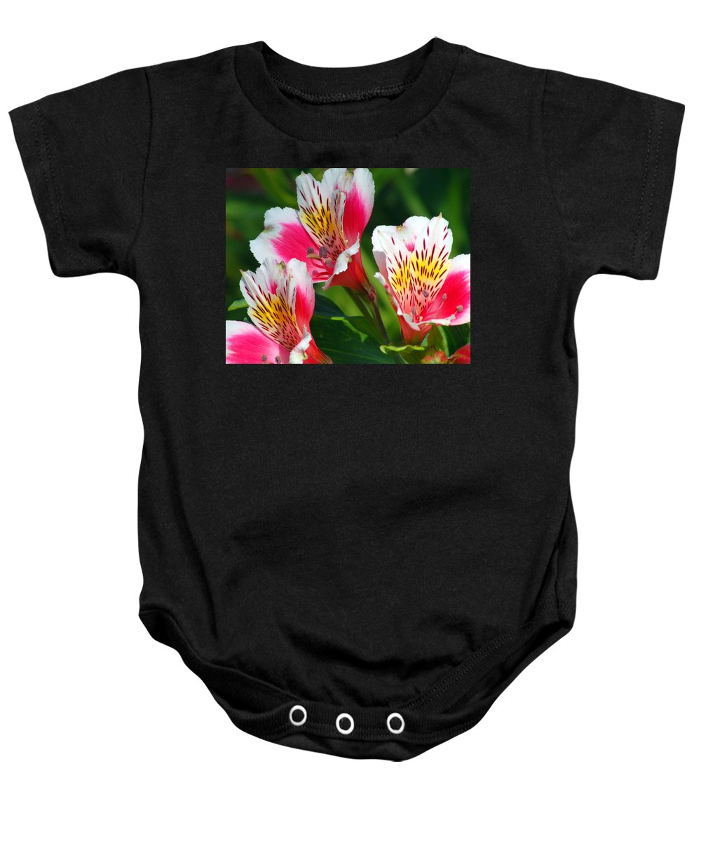 Peruvian Baby Onesie featuring the photograph Pink Peruvian Lily 2 by Amy Fose