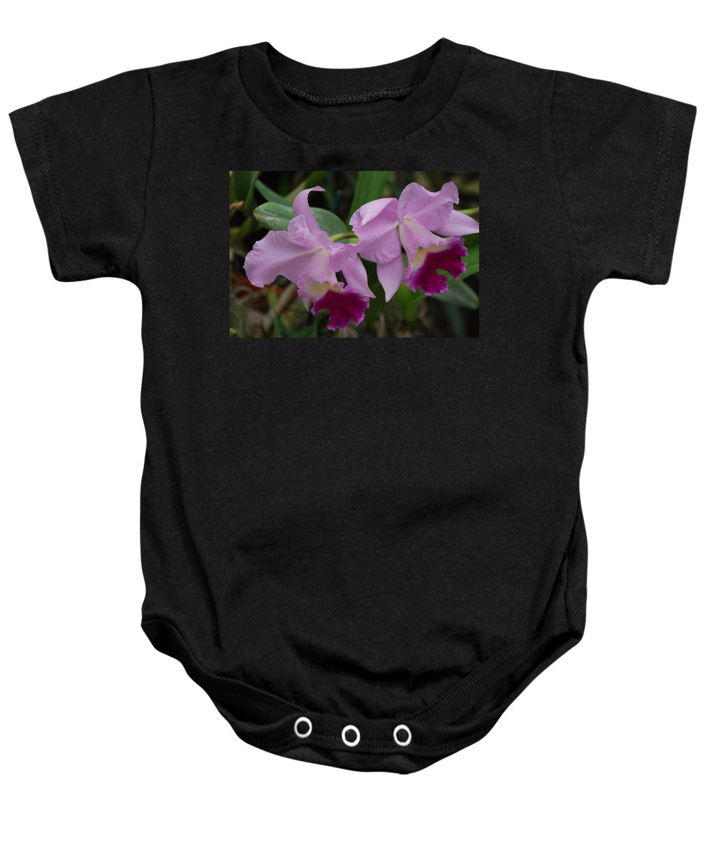 Macro Baby Onesie featuring the photograph Pink Purple Orchids by Rob Hans