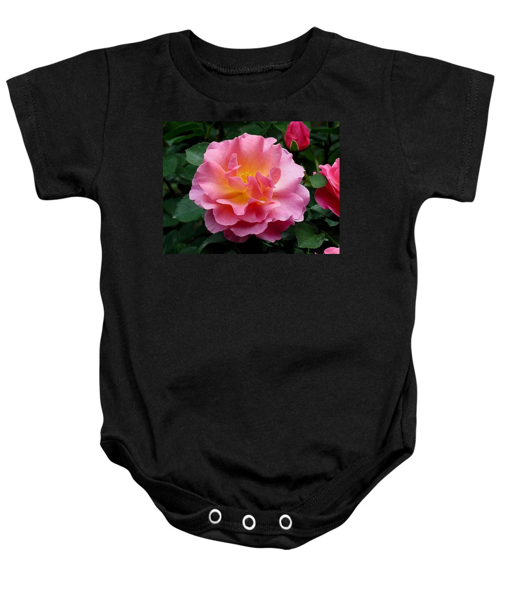 Rose Baby Onesie featuring the photograph Pink Rose 3 by J M Farris Photography