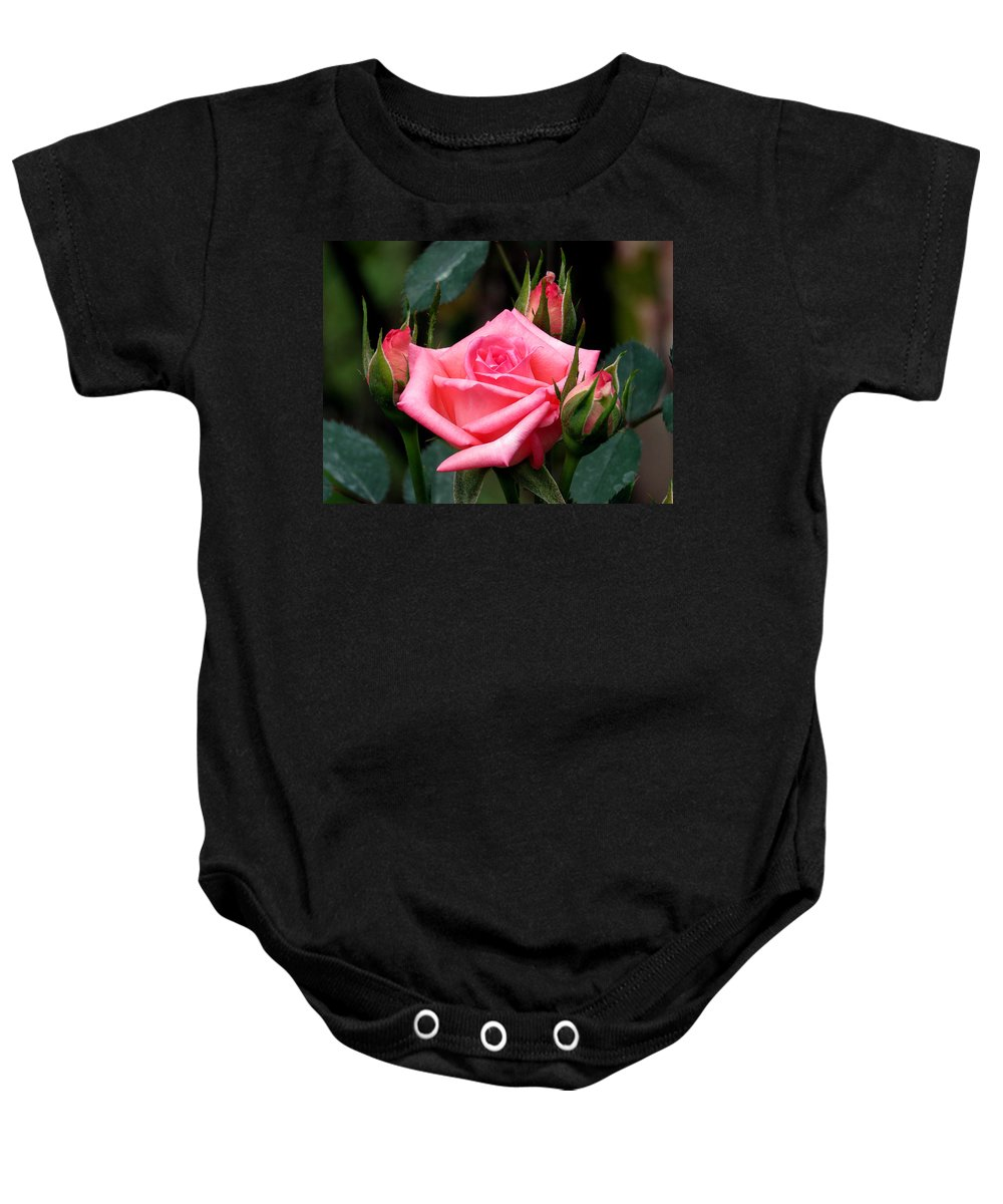 Rose Baby Onesie featuring the photograph Pink Rose 5 by J M Farris Photography