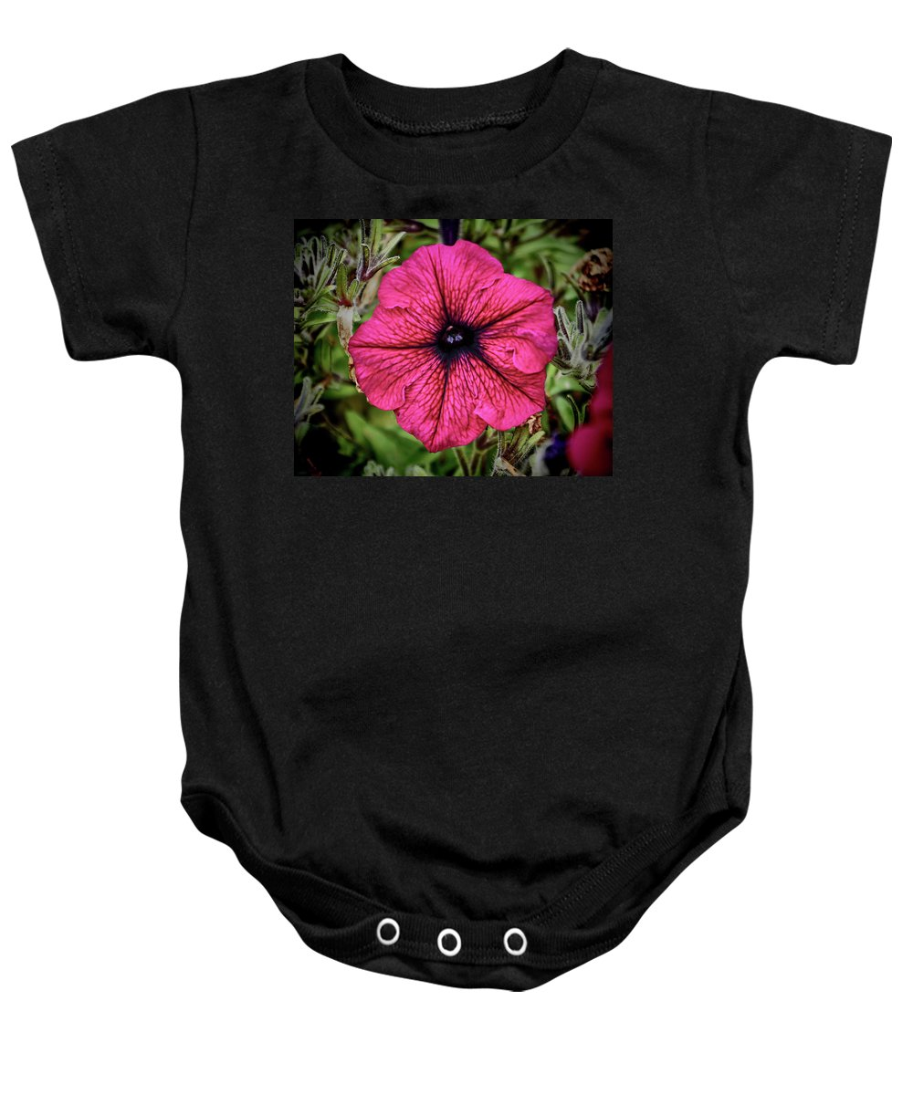 Petunia Baby Onesie featuring the photograph Pinkish Purplish Redish Petunia by Kenneth Roberts