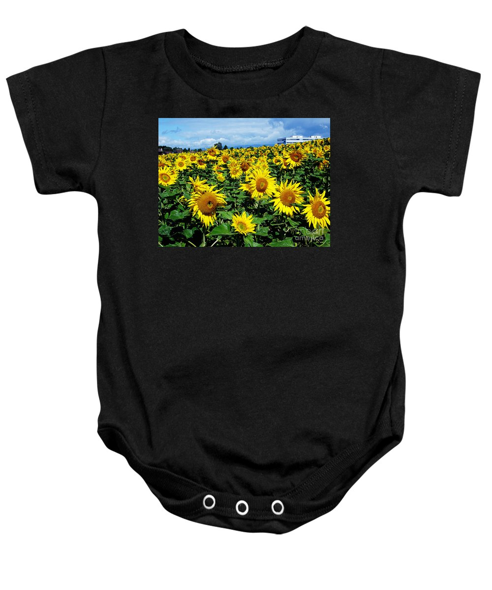 Sunflowers Baby Onesie featuring the photograph Pleasant Warmth by Jeff Barrett